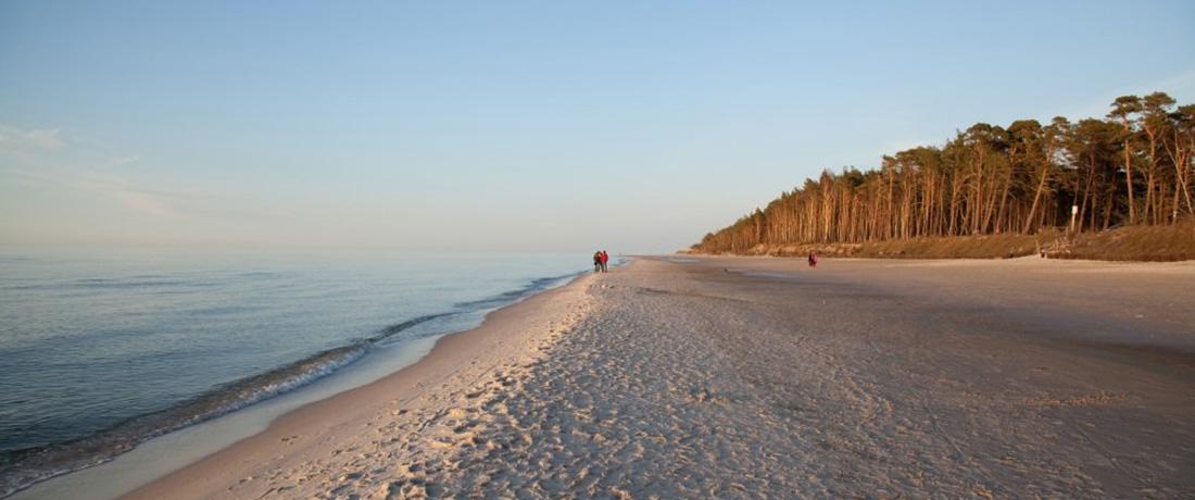 Tylko 2,5 km do plaży!